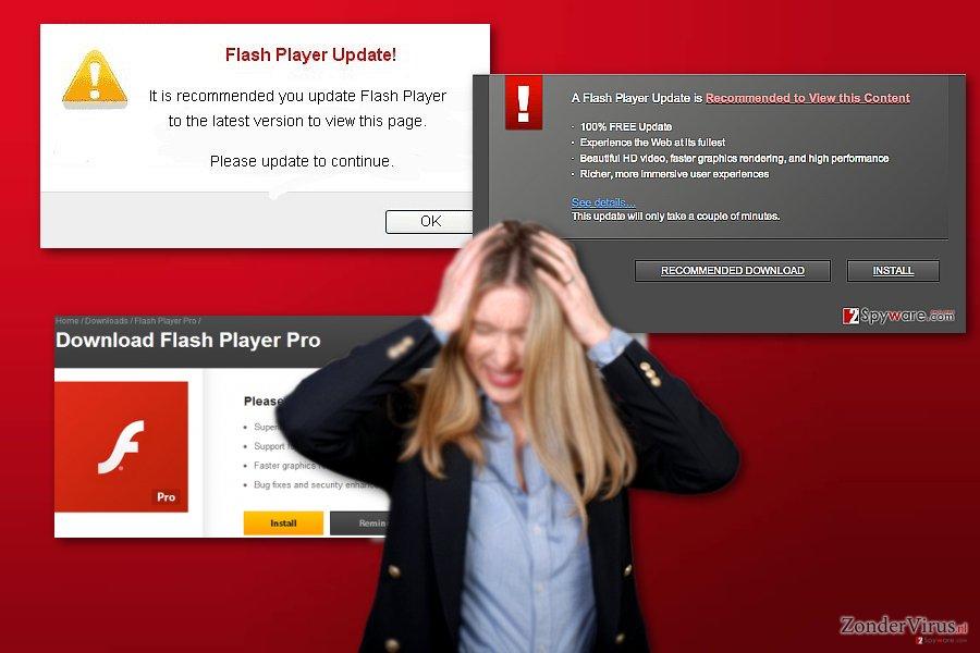 Flash Player Pro virus snapshot