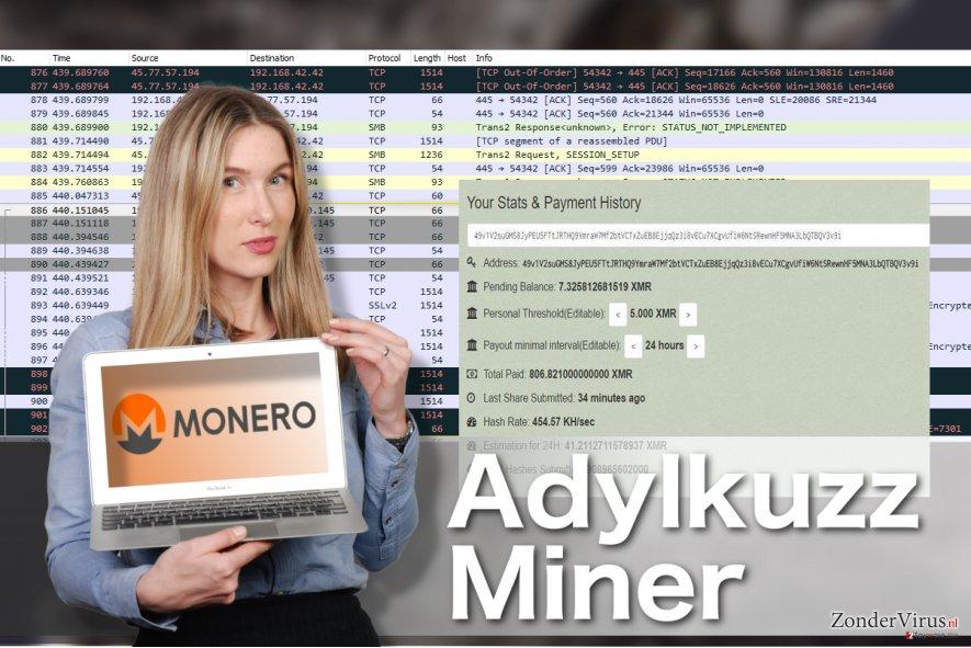 Illustratie inzake het Adylkuzz-miner-virus