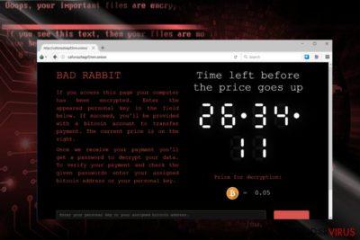 Schermafbeelding van de BadRabbit betalingssite