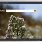 Bing redirect-infectie snapshot
