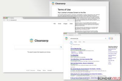 De afbeelding van Cleanserp.net