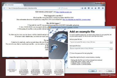 Een afbeelding van het CryptoMix-virus