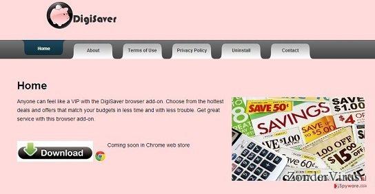 DigiSaver snapshot