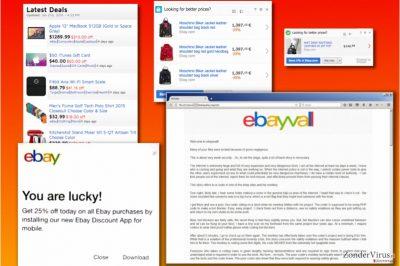 Varianten van het eBay-virus