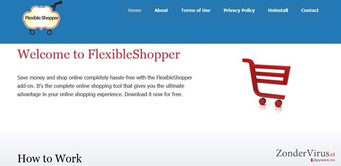 FlexibleShopper ads snapshot