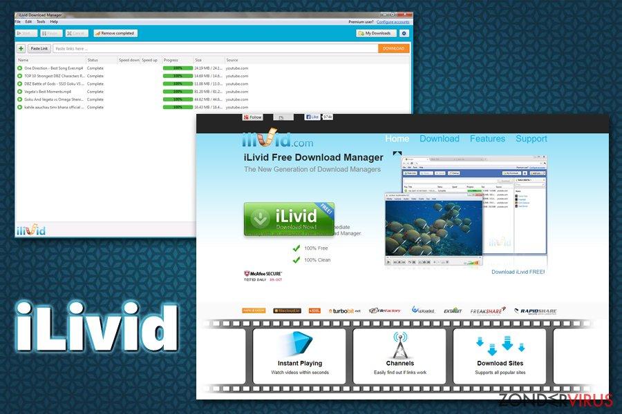 iLivid virus snapshot