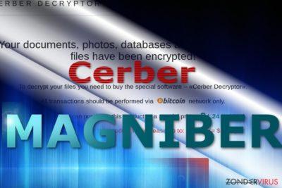 Magniber virus betalingssite