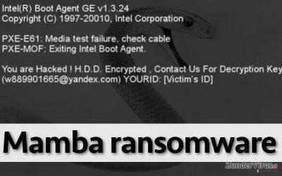 De Mamba-gijzelsoftware staat de gebruiker niet toe om zijn PC te gebruiken