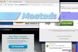 Het Moatads-virus