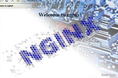 De afbeelding illustreert de Nginx malware
