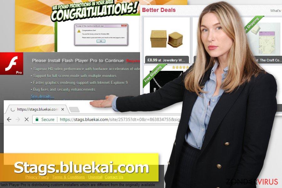 Afbeelding van het Stags.bluekai.com virus