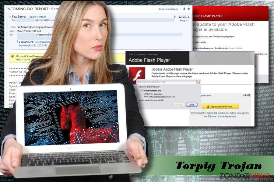Een afbeelding van het Torpig virus