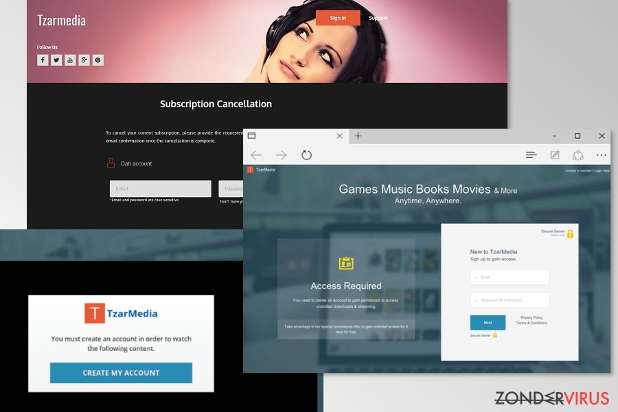 Example of TzarMedia websites