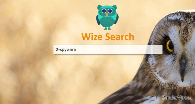 A screenshot of the Wizesearch.com browser hijacker virus