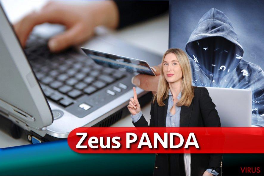De Zeus Panda banking malware