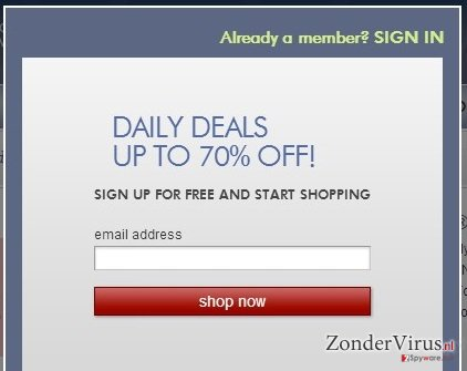 Zulily.com ads snapshot